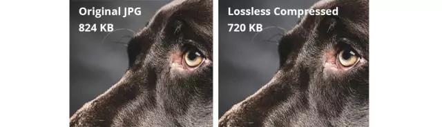 Kết quả hình ảnh cho jpeg before and after compression